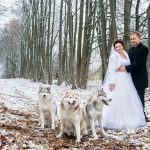 свадьба с лайками