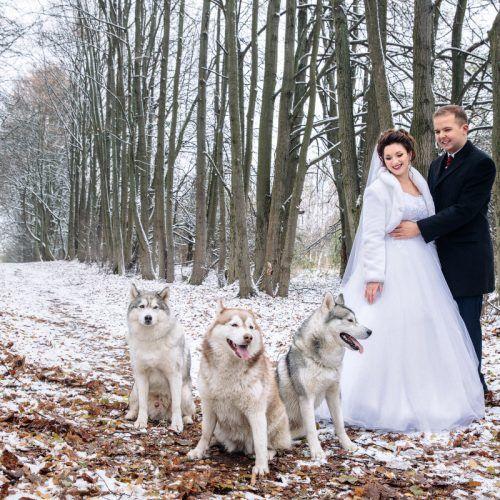 лайки на свадьбе