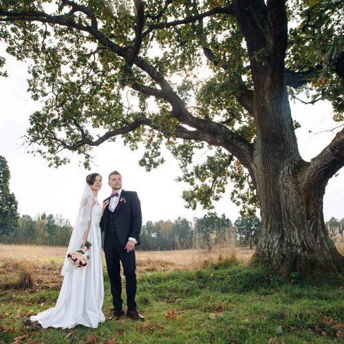 свадебное фото у дуба